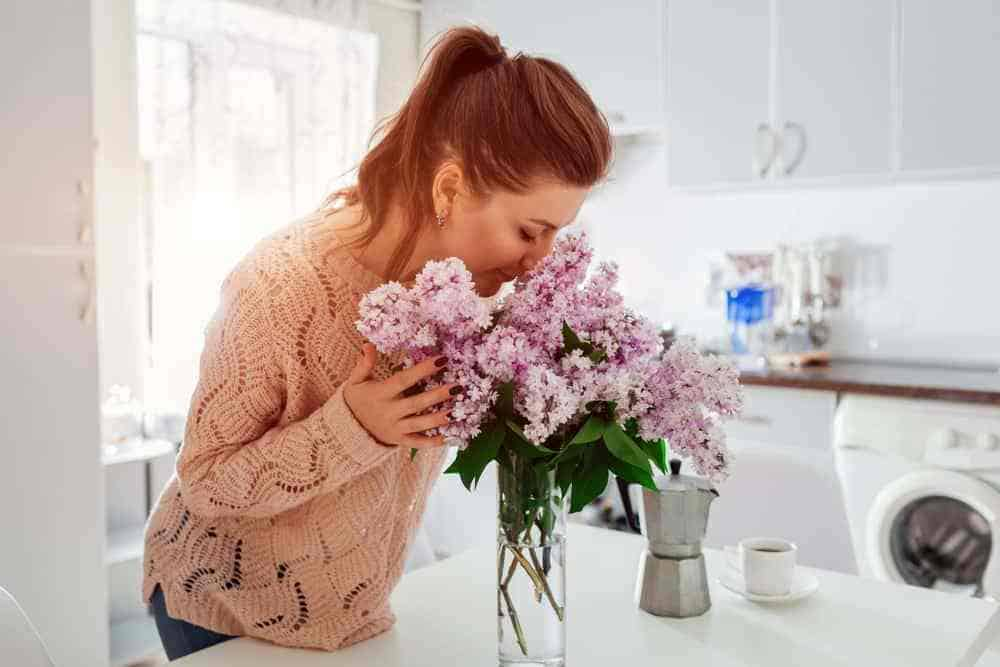 Allergy Cleaning 101: Cleaning Your Home of Allergens