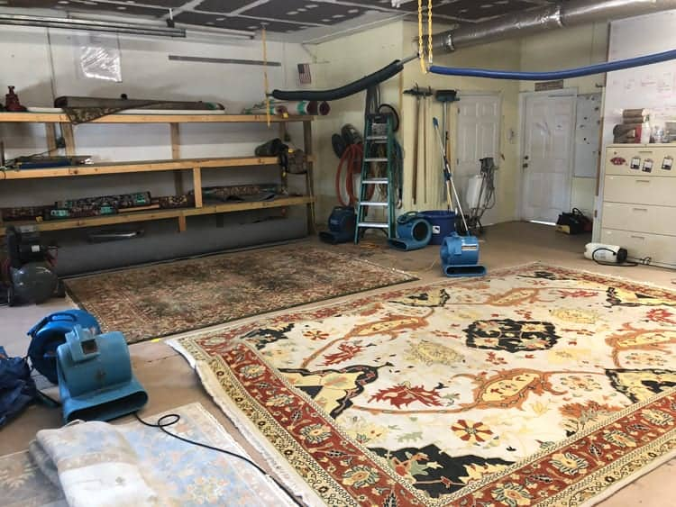 area rug cleaning specials