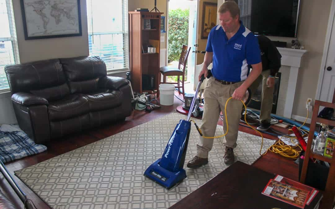 Area Rug Cleaning and Care