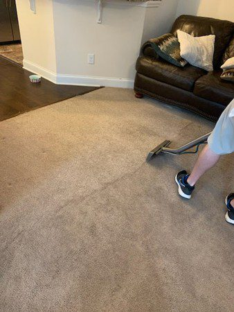 Carpet Filtration Lines and How to Get Rid of Them